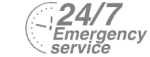 24/7 Emergency Service Pest Control in Elephant & Castle, SE17. Call Now! 020 8166 9746